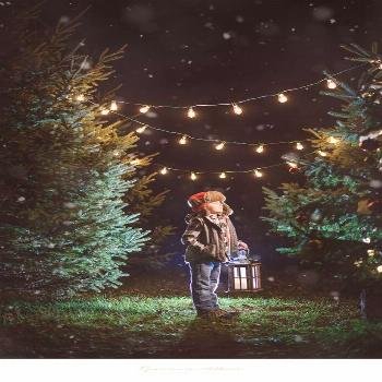 Photography props winter mini sessions 17+ trendy ideas